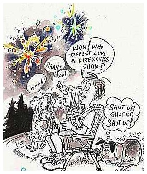 Fireworks-show.06.20.10.jpg