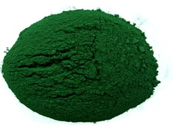 spirulina_powder.07.19.10.jpg