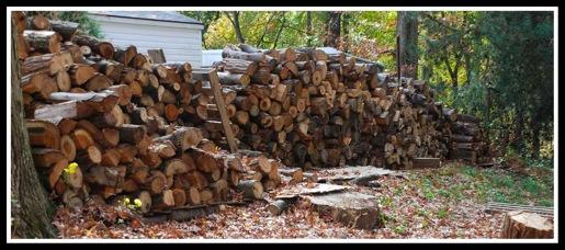 Woodpile 3
