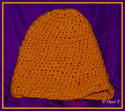 Crocheted Hat 1 12 27 11