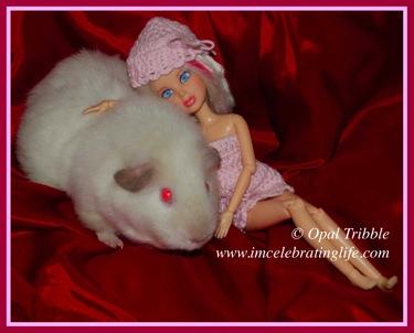 Liv Girl Guinea pig Sophie 1