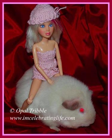 Liv Girl Guinea pig Sophie 2