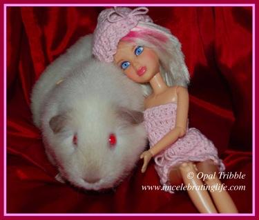 Liv Girl Guinea pig Sophie 3