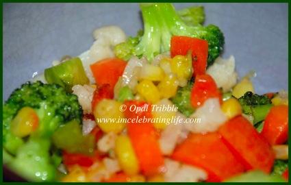 Vegan vegetable stir fry 04 19 12