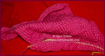 Knitting Stockinette scarf 1 05 28 12
