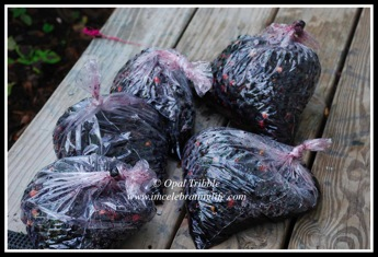 Mulberries storage bags 1