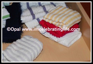 Knitted dishcloth SC1