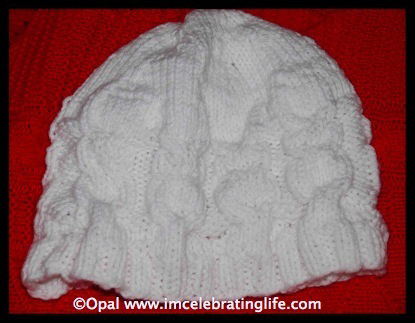 Knitted owl cable ribbed beanie hat 1