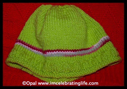 Knitted ribbed beanie hat 1