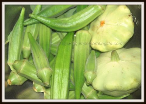 Garden: Okra and scallop squash