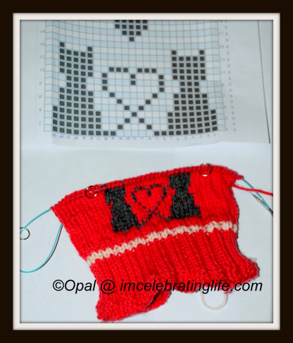 Knitting Intarsia cats in love