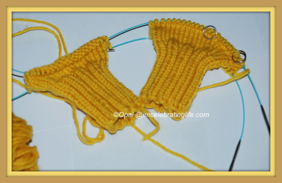 Knitting - two at a time mittens_1