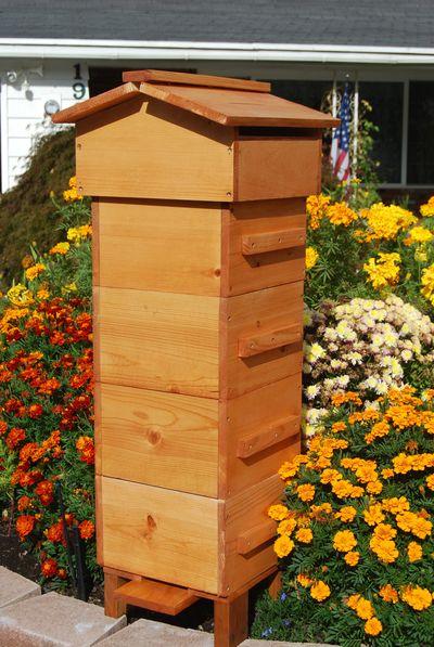 Warre Bee Hive