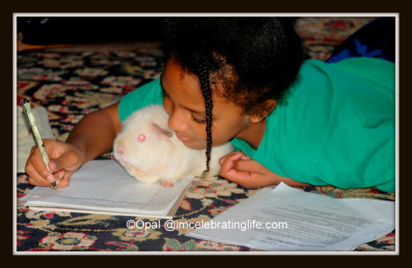 Daughter with Angel the Guinea Pig