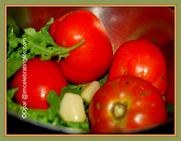 Garden - tomatoes, lettuce and garlic