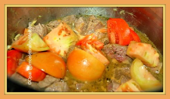 Siga Wot Ethiopian Beef Stew_1
