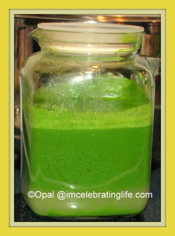 Juicing-Dark Leafy greens_2