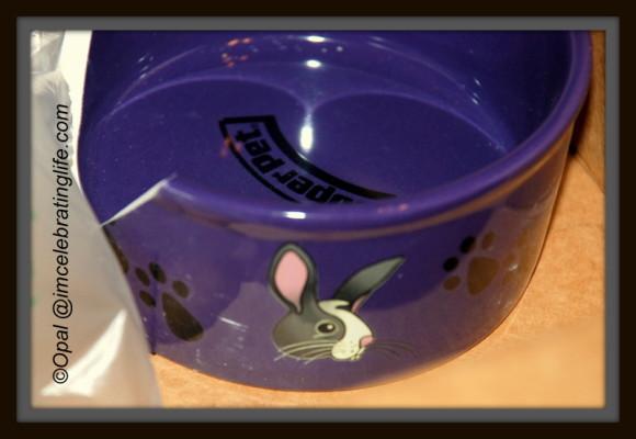Amazon Broken Rabbit bowl_2