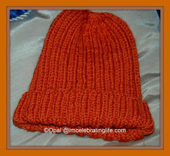 Knitting-Ribbed-Hat_2_11.3.13