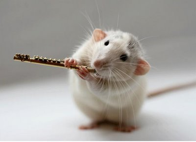 mouse with flute