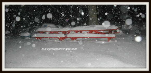 Snow Storm_3.04.02.13