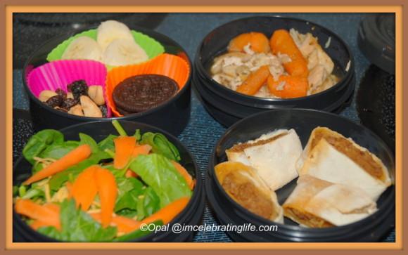 Zijurushi lunch.2.6.14