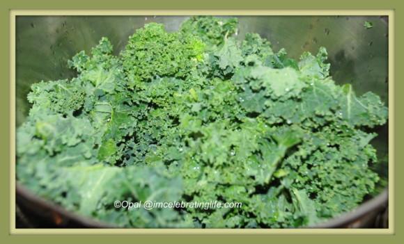 Fresh kale 03.22.14