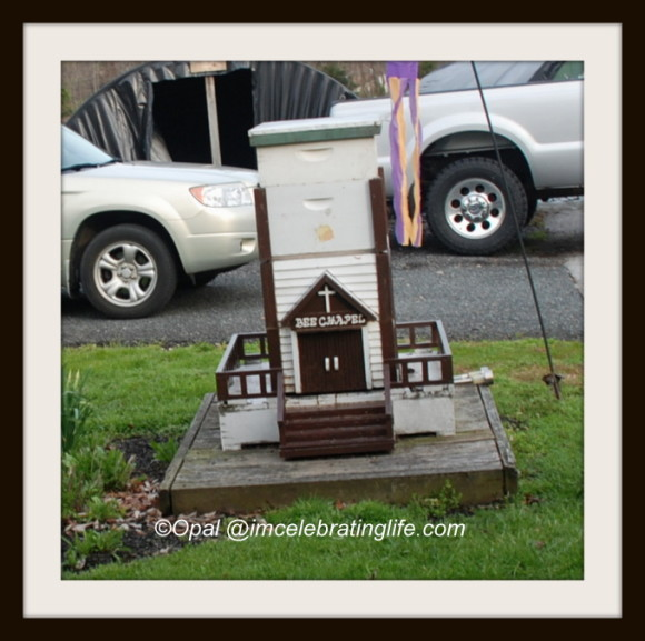 Millers Bees - Bee Chapel