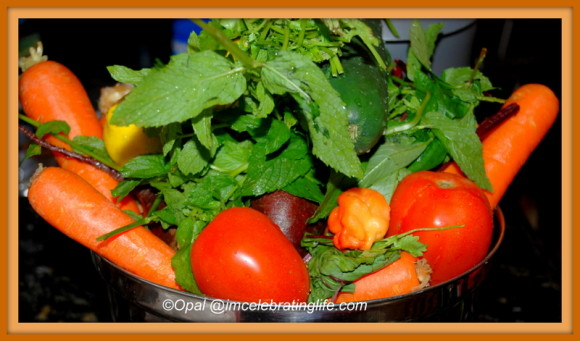 Produce for Juicing