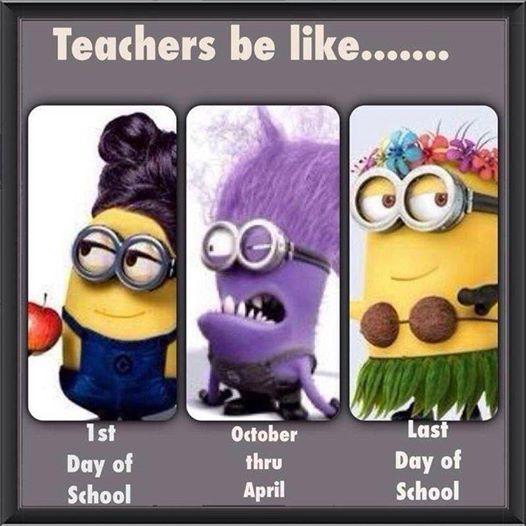 A Teacher's School Year