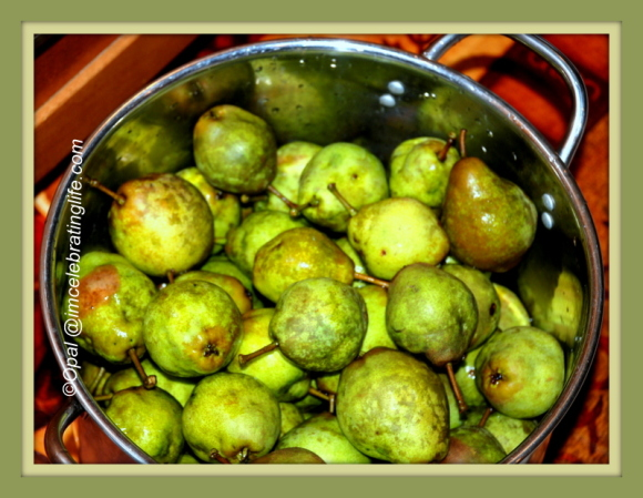 Pears 9.13.14