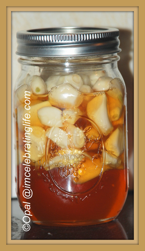 Fermented honey garlic_1 10.19.14