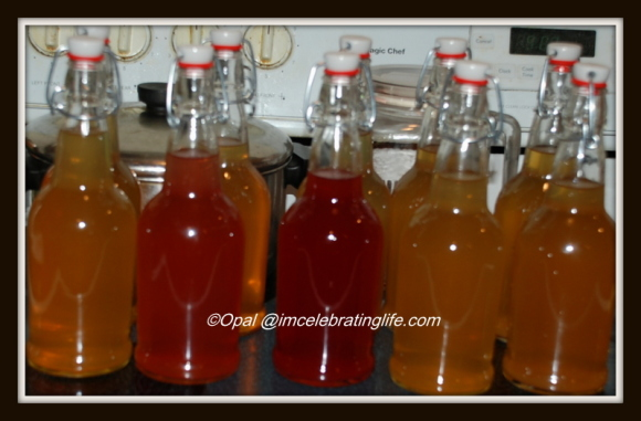 Water Kefir Soda 4 11.4.14