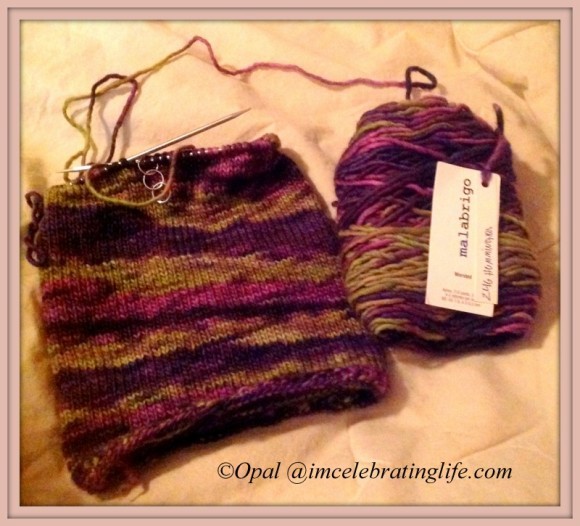 Malabrigo yarn - Knit Hat